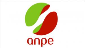 Sigle en minuscules dans un logo
