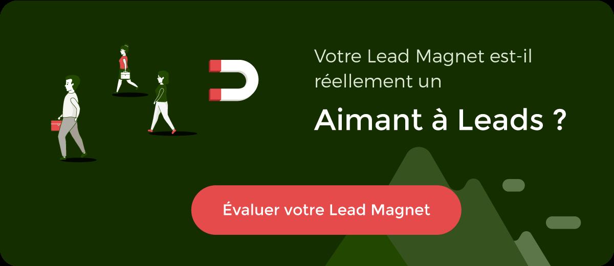 évaluez vos idées de lead magnets, au delà du livre blanc