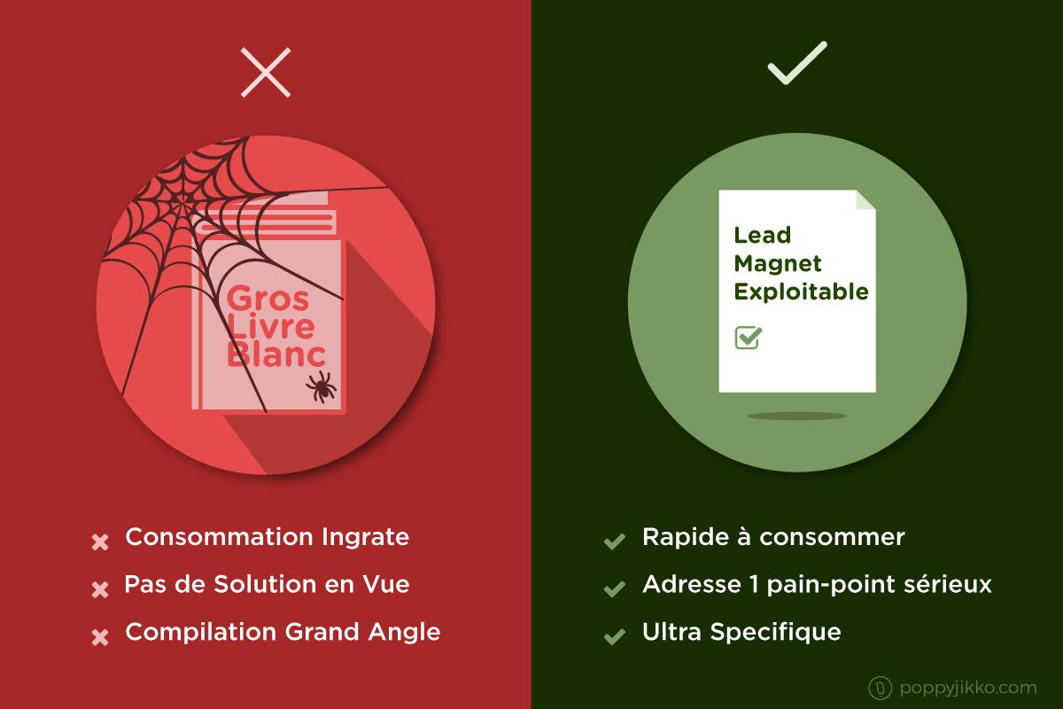 Livre blanc vs lead magnet